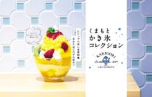 画像:【381号】くまもとかき氷コレクション