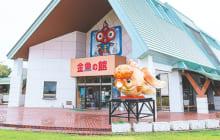 画像:【エリア情報 立ち寄りスポット】金魚の館