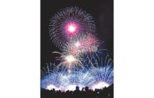 画像:熊本地震復興祈願 第30回記念 やつしろ全国花火競技大会