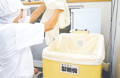 製麹(せいぎく)機に入れて温度管理に注意しながら、麹を大事に育てていきます
