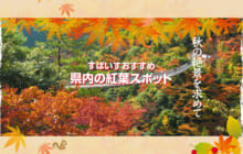 画像:【390号】すぱいすフォーカス – 秋の絶景を求めて すぱいすおすすめ 県内の紅葉スポット