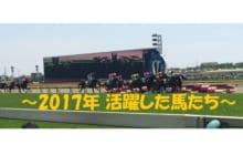画像:【うまにち】第13回〜2017年活躍したお馬さんたち編〜