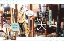 画像:【401号】つぶらな瞳のお店番 今年は主役! 看板犬