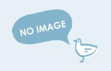 画像:【すぱいす文化部】(探求!肥後の爽風(そよかぜ))