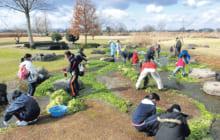 画像:冬の水草清掃活動 ~みんなで江津湖の外来水草を退治しよう!~