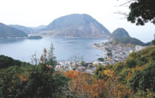 画像:森林自然観察・体験教室 三角岳登山・世界遺産と自然遊歩道巡り