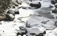 画像:雪の阿蘇巡り