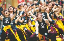 画像:九州がっ祭/火の国YOSAKOIまつり