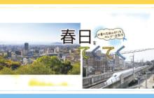 画像:【417号】初夏の花岡山辺りをのんびりお散歩 春日をてくてく