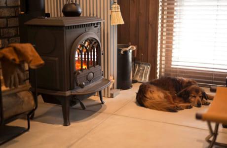 暖炉の前は犬や猫がいつも場所の取り合いをする人気スポット