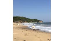 画像:脇田(北九州)の海へ【熊本大学新聞社】
