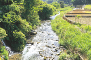 釈迦院川が流れる静かな山里