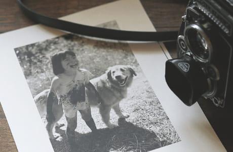 長男の遊ぶ姿を収めた写真集がコンクールで受賞したことを機に、プロの写真家としての活動が始まりました