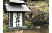 画像:自然の恐ろしさは、時に神となる。瀬田神宮【探検部】