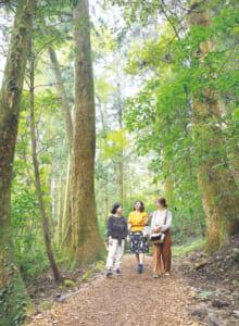 菊池渓谷は「日本森林浴の森百選」の一つ。うっそうとした広葉樹の林は、喧騒(けんそう)を忘れさせ、道行く人々を非日常へと導いてくれます。約2時間かけて散策を満喫しました