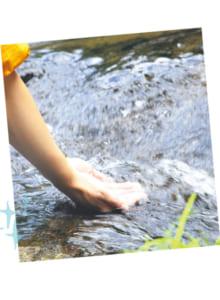 遊歩道の一番奥の折り返し点にある広河原では、「日本名水百選」にも選ばれている菊池川の源流水に触れられます。こんこんと湧き出る清水は真夏でも手がかじかむほどの冷たさ!