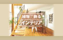 画像:【440号】植物で飾る インテリア