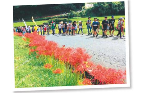 北区の子ども保健課などと連携して10月に行っている「秋の彼岸花ロードハイキング」。親子連れなど250人以上が参加(写真提供/川上校区青少協)