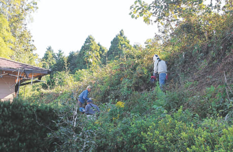 老人憩いの家や拝ヶ石の草刈りも行っている東門寺老人クラブの皆さん。町内一斉清掃の際には、急斜面での作業も