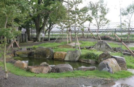 ゴミ置き場のようになっていた一角をきれいにし、住民たちで作った「なごみの池」(写真提供/下内田公民館)