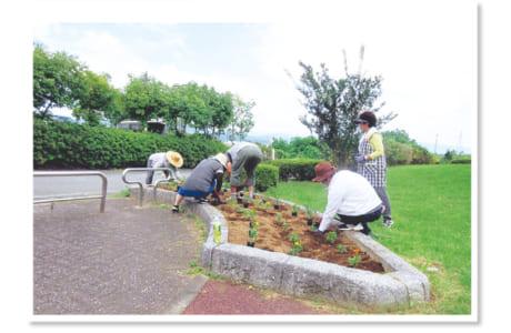 公園内の花壇に植栽を行う秋津三丁目公園愛護会の皆さん。夏の作業などは、数分で汗だくに(写真提供/秋津まちづくりセンター)