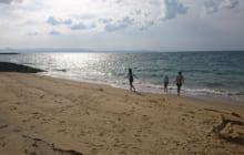 画像:久しぶりの海