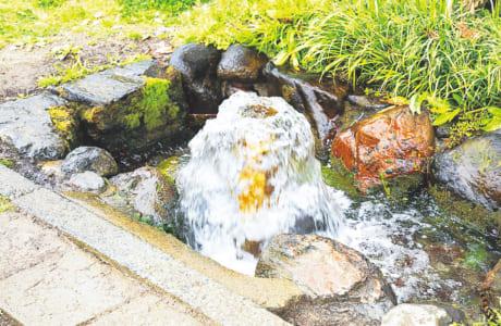 遊歩道脇で、勢いよくあふれ出る湧水