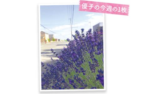 監督を務めるキャノンAC九州の合宿で訪れている北海道にて。厳しい練習の合間にラベンダーの香りに癒やされます