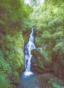 落差38mの「梅の木轟の滝」には、滝つぼ近くまで進むことができます。ひんやりした空気が気持ちいい!