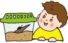 画像:【482号】子育てラボ – 楽しむ VOL.359
