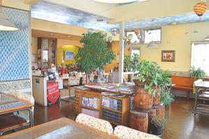 天井に青空模様の壁紙が張られた店内。明るく開放的な雰囲気です