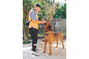 「動物愛護のボランティアをしている時が一番自分らしくいられる」と話すユウ君