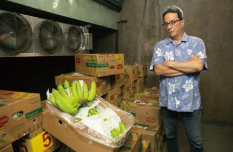 一子相伝の技でバナナを熟成。室の中は産地と同じ温度・湿度に保たれています