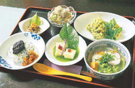薬草カレー、薬草だご汁付きの「スペシャルランチ」1000円。予約に応じてオリジナルのメニューもオーダーできます