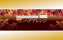 画像:【492号】秋のお呼ばれ&お出かけに 今どき セルフヘアアレンジ