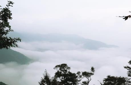 早朝に撮った雲海。地元の方いわく、さらに絶景の日があるそうなので、また訪れたいです。春と秋がオススメ