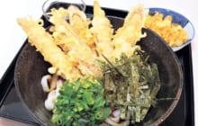 画像:【508号】麺's すぱいす – 一品料理も楽しめる手打ちうどんの店 麺仙人(めんせんにん)