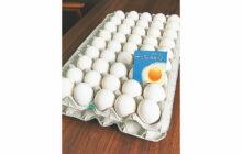 画像:新鮮卵の「あおぞらたまご」