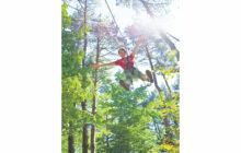 画像:森の中で爽快アスレチック体験