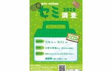 画像:熊本市セミ調査2020