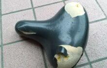 画像:わが家の鳥獣被害