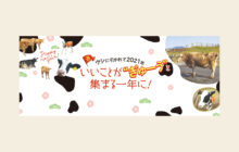 """画像:【556号】すぱいすフォーカス – ウシに引かれて2021年 いいことが""""ぎゅーう""""と集まる一年に!"""