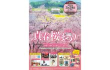画像:貞春桜まつり2021