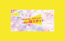 画像:【春の風物詩】くまもと桜スポット