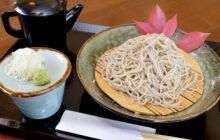 画像:【571号】麺's すぱいす – 石臼で粗びきにした国産そば粉を使用 十割そば 関庵(せきあん)