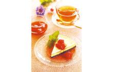 画像:おうちでCOOK – サワークリームチーズケーキ