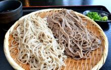 画像:【584号】麺's すぱいす – 熊本地震で被災、5年ぶりに営業を再開 うどん家 あそ